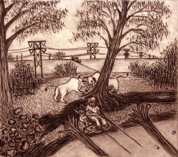 Brahmas charcoal drawing